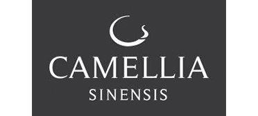 Caméllia Sinensis Québec